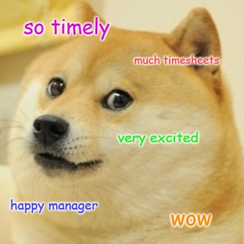Timesheet meme for managers #6